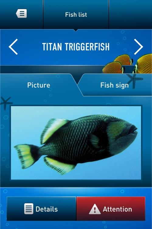Dive Guide screenshot-3