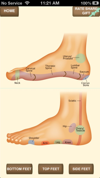 iPocket Foot Reflexology screenshot-3