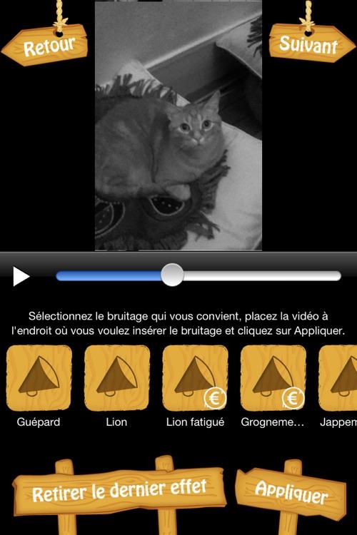 MyFélins - Montage vidéo et photo pour transformer votre chat en félin