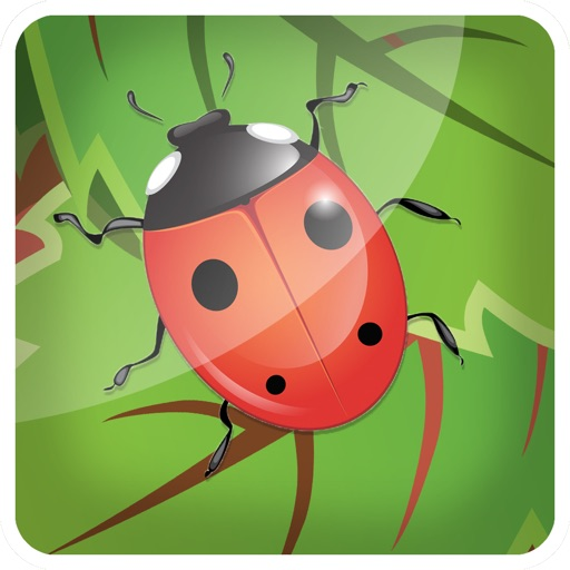 3D Bug Farm Flick N Fling Game for Free
