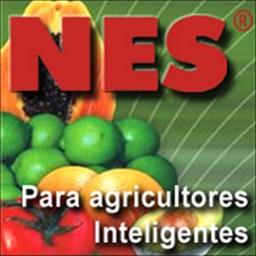 NesApp