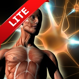 ATLAS: Human Body A-Z FREE for iPad