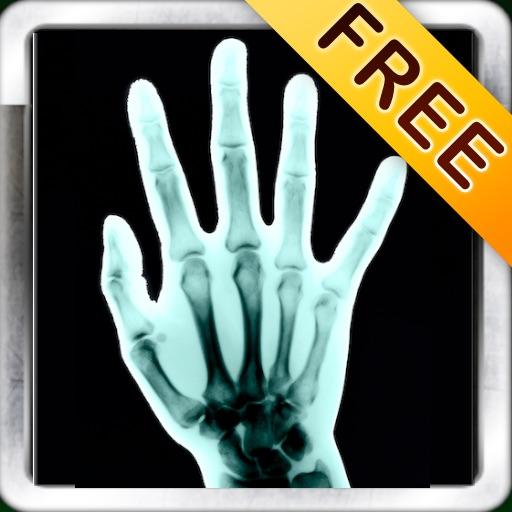 Рентгеновское сканирование( X-Ray Scan) + Free