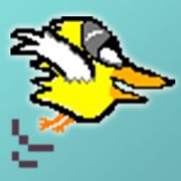 Funny Birds FREE