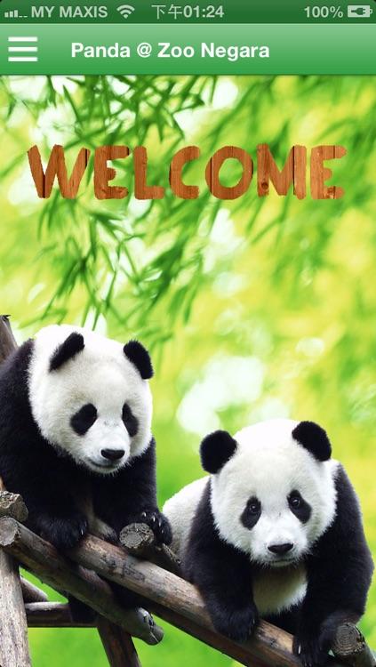 Panda @ Zoo Negara