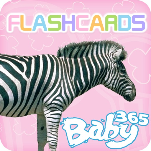 baby365-bilingual flash cards - animals (part 1) icon
