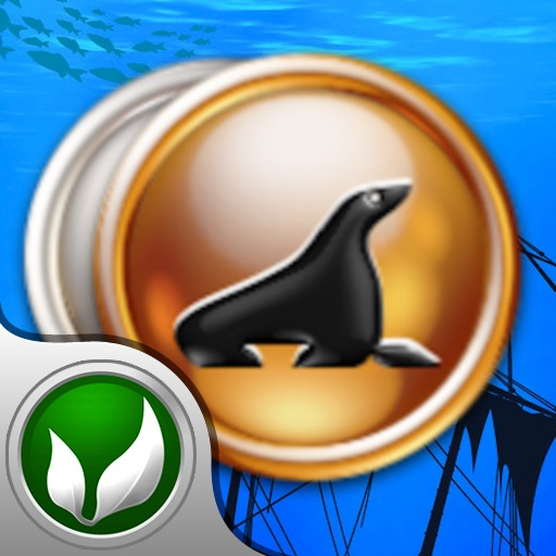 A Pirates' Treasure: Coin Collection icon