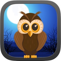 Codes for Dark Night Owl Shooter Game Hack