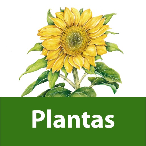 Plants and Flowers. Visual Encyclopaedia of Questions