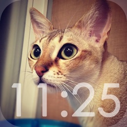 CatClock - clock for cat lovers -