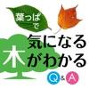 葉っぱで気になる木がわかる Q&Aで見分ける 350種 樹木鑑定