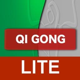 Qi Gong yi jin jing lite