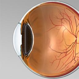 IMTouch Eye