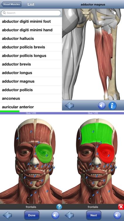 Visual Muscles 3D screenshot-4