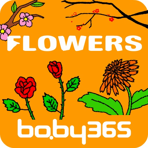 Blossom-baby365 icon