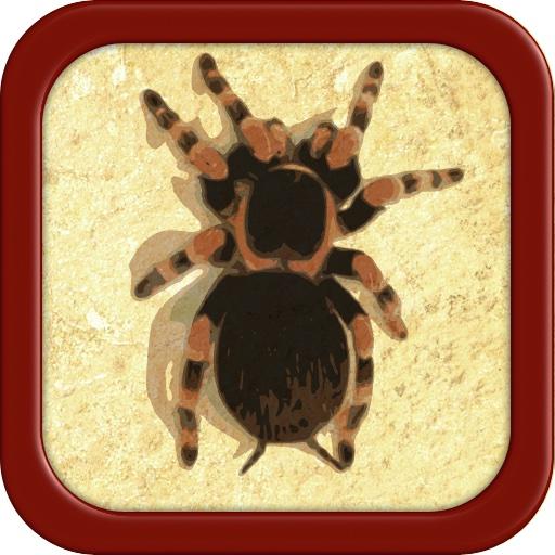 Pocket Tarantula 3D Pro - Spider Pet
