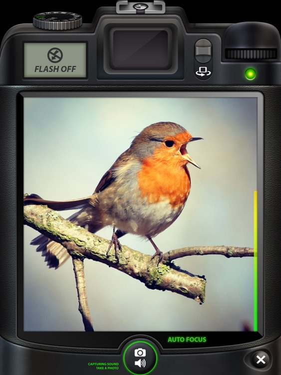 Camera SX for iPad : Photo with Sound screenshot-3