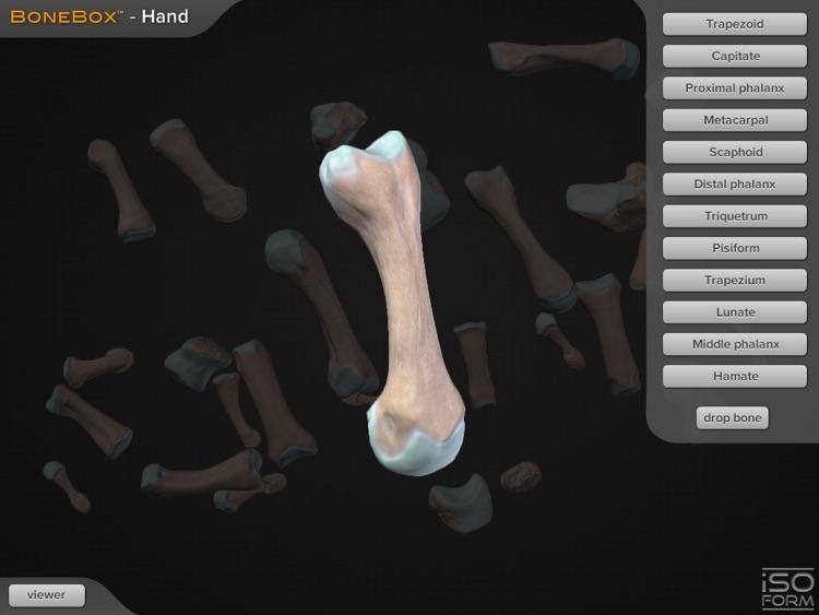 BoneBox™ - Hand Viewer