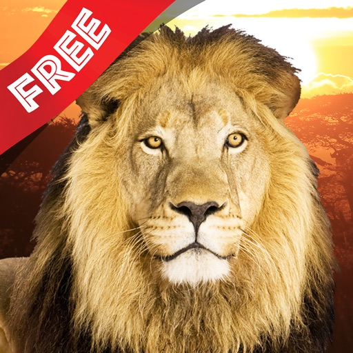 Free Kids Puzzle Teach me Wild Animals Safari Photo icon