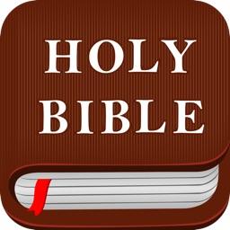 圣经导读+
