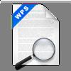 WPSFileReader - CAI WEI