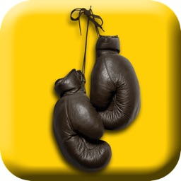 Fight Like A Pro