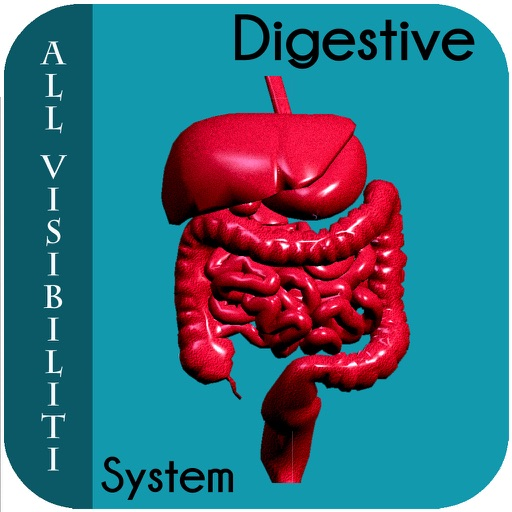 All Visibiliti Digestive System icon