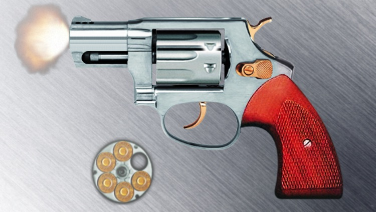 Revolver Firearms: Gun Shots App