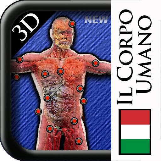 Corpo Umano 3D