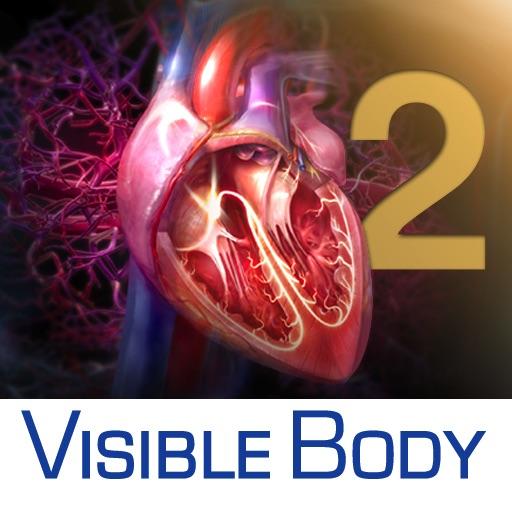 3D Heart & Circulatory Premium 2 (3D-Herz- & Kreislauf Premium 2) im ...