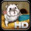 Petbox - Russian Hamster