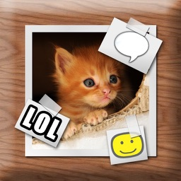 PhotoCaps - Best App for Captions, Labels, Clipart on your photos