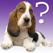 犬の品種クイズ iPad