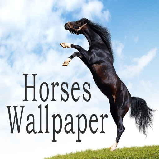 Horses Wallpaper & Background