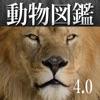 動く!動物図鑑:Animal Life for Japan