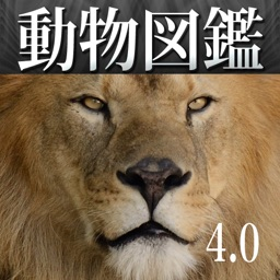 Animal Life for Japan
