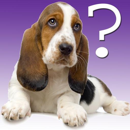 Dog Breed Quiz for iPad