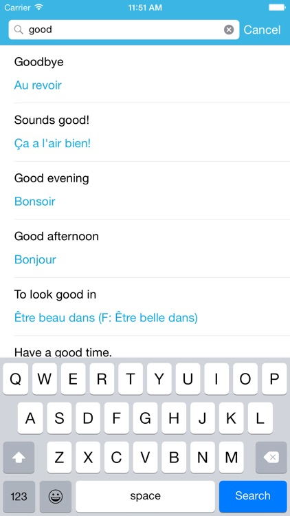 French Phrasebook: Conversational French screenshot-3