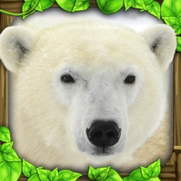 Polar Bear Simulator