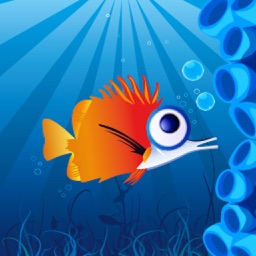 Frizzle Fish Crush Mania HD-Pop All Fishes