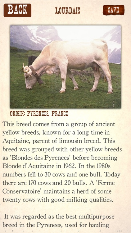 Cattle Breeds: Various Types of Cattle screenshot-3