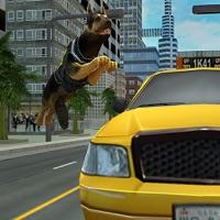 Codes for Super Police Dog 3D Hack