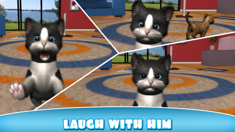 Daily Kitten : virtual cat pet screenshot-3