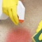 This app is  the best video guide for you to learn how to remove stains