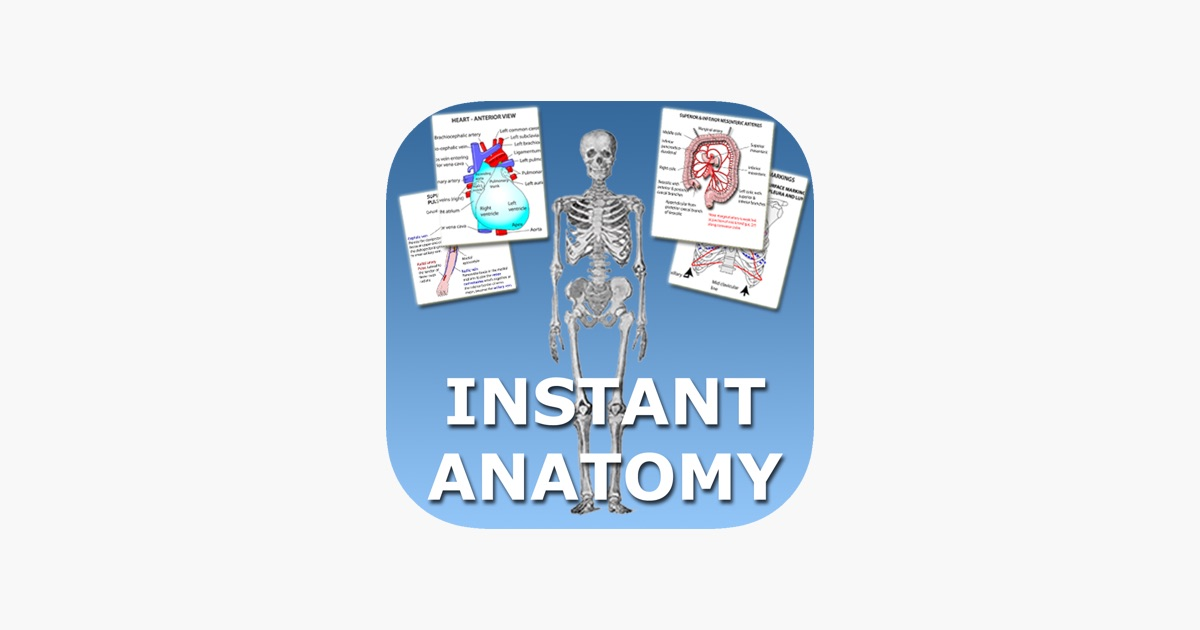 Instant Anatomy Flash Cards on the App Store