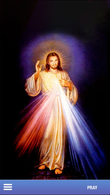 Divine Mercy Chaplet screenshot-3