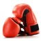 Boxing Guide is the complete video guide for you to learn boxing