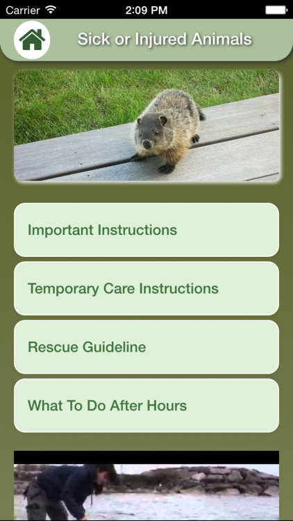 Wildlife Help - Toronto Wildlife Centre Rescue Injured, Sick & Orphaned Wild Animals screenshot-4