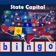 Activities of State Capital Bingo Lite