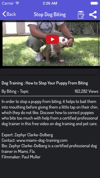 How To Train a Dog - Dog Training Guide